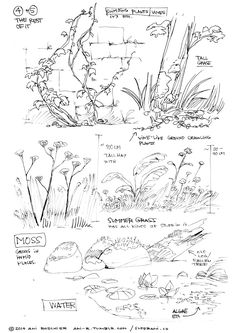 "ani-r: "" Let's talk about trees - a practical how-to for populating your natural environments and landscapes with trees and plantlife in drawings I've seen a lot of people who really want to do. Nature Sketch, Nature Drawing, Plant Drawing, Painting & Drawing, Landscape Sketch, Landscape Drawings, Landscapes, Realistic Drawings, Cool Drawings"