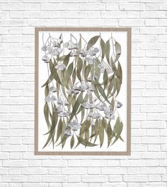 The Eucalyptus caesia was a rare and endangered species hailing from the Western Australian goldfields. It is now one of the most popular. Mold Making, Endangered Species, Fine Art Paper, Fine Art Prints, Watercolor, Sculpture, Texture, Artist, Painting
