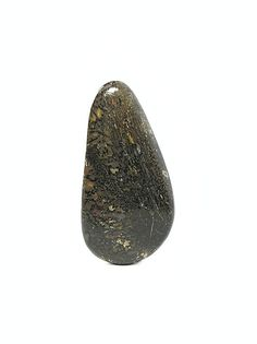Dinosaur Gembone Brown Webbed Agate Fossil by FenderMinerals