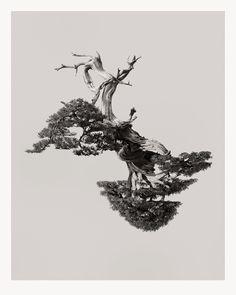 Chris Hornbecker Photographer | reflections | 3