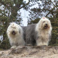 Sarah & Rhea - #RheaenLisa
