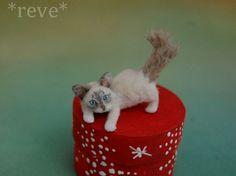 OOAK Realistic Handmade ~ Playful Kitten ~ Miniature 1:12 Sculpture * Reve #Handmade