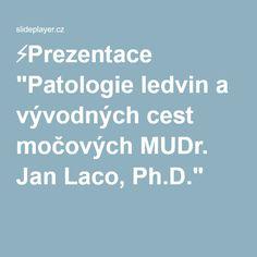 """⚡Prezentace """"Patologie ledvin a vývodných cest močových MUDr. Jan Laco, Ph.D."""""""