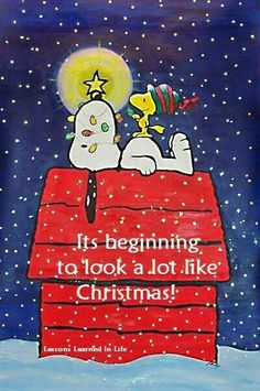 It's beginning to look a lot like Christmas Snoopy on his dog house