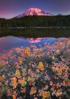 Fall Morning Reflection Lakes in Mount Rainier National Park, Washington