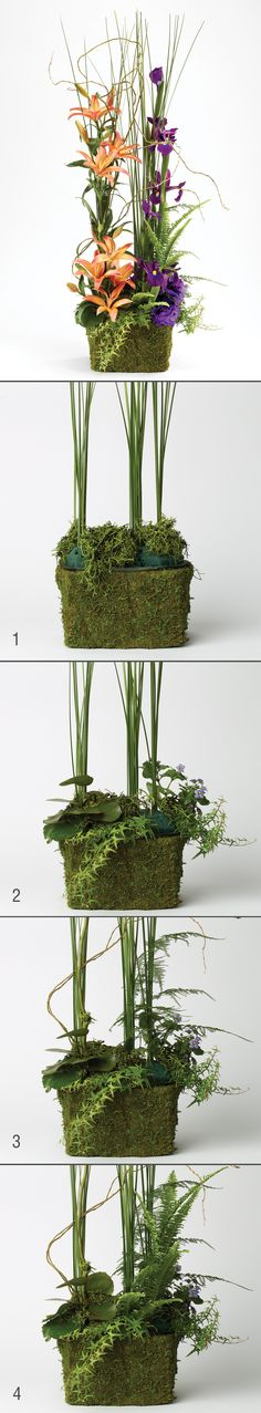 Creating a lush base with greenery for exotic displays by Rene van Rems