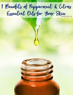 7 Benefits of Peppermint and Citrus Essential Oils for Your Skin! I'm amazed at what adding these to your beauty routine can do your four skin!