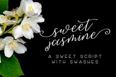 Sweet Jasmine Script Fonts **Introducing Sweet Jasmine Script**Sweet Jasmine is a lovely, hand-lettered script with swashes by BeckMcCormick