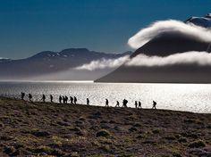 Tundra Trek, Svalbard