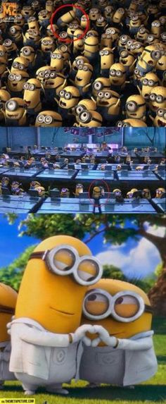 Funny Minions pictures gallery (01:55:07 PM, Tuesday 23, June 2015 PDT) – 10 pics #funny  #lol  #humor  #minions  #minion  #minionquotes  #minionsquotes   #despicableMe   #quotes #quote  #minioncaptions #jokes #funnypics