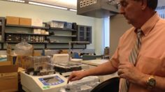 New project aims to 3D print heart within a decade