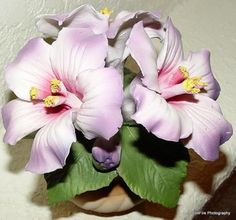 Lovely Capodimonte porcelain hibiscus