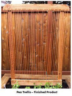 Pea Trellis: very easy to make! Pea Trellis, Garden Trellis, Raised Bed Plans, Raised Beds, Veg Patch, City Farm, Garden Inspiration, Garden Ideas, Gnome Garden