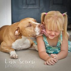 Beautiful. This is what Pit Bulls are really like.