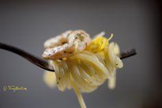 Garlic, Spaghetti, Pasta, Vegetables, Food, Noodles, Veggies, Essen, Vegetable Recipes