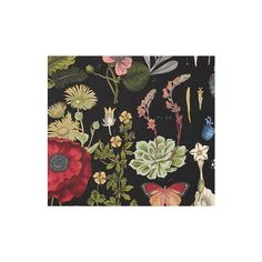 Pottery Barn Fabric By the Yard - Poppy Botanical Black (595 ARS) ❤ liked on Polyvore featuring home, home improvement and fabric
