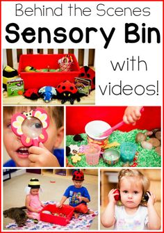 See a sensory bin in action with a tot!  Videos included!