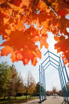 Grand Valley State University in the fall - pictured is one of Grand Valley's famous art structures
