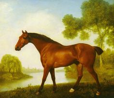 Truss, A Hunter Premium by George Stubbs. Giclee print from Art.com.