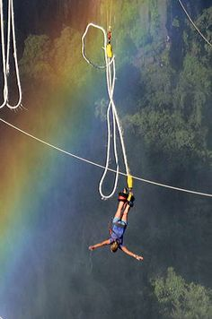 Bungee Jumping 111 metres into the Zambezi River @ Victoria Falls