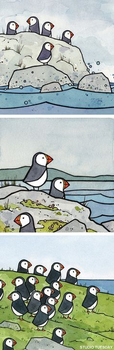Puffins Print Set - want these for my wall. Too cute.