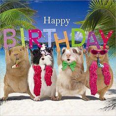 Happy Birthday_12