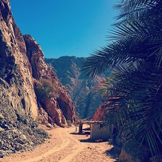 """A terrain of the mind and spirit.."" - Barry Lopez  #dahab"