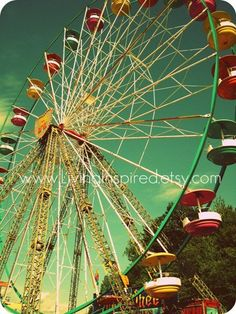Ferris Wheel. Never rode one.