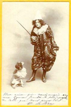 Huxtable The Poodle | Toy Poodle Blog | Parti Poodle: History of Parti Poodle