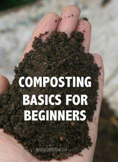 Composting Basics for Beginners Gardening Tips #beginnergardening #Vegetablegardenbasics