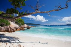 Where to go on holiday - The enduring Seychelles will never lose their appeal. Pictured: Grande Soeur, a small island near La Digue I Pic Jean-Marie Hullot