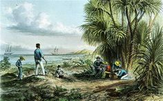 An Explorers Camp, Australia, a painting by Thomas Baines. Art Thomas, Empire, British, Australia, Camping, Painting, Campsite, Painting Art, Paintings