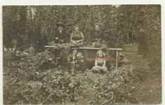 Hop Picking Heathfield RP Postcard 1911 Sussex Rural Farming crop Harvest Social Royal Mail, Vintage Postcards, Farming, Harvest, British, Ebay, Vintage Travel Postcards, England