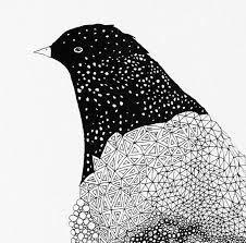 Illustrations by Maja Säfström Stockholm based architect and illustrator Creative Illustration, Illustration Art, Detailed Drawings, Bird Drawings, Bird Art, Beautiful Birds, Art Inspo, Typography, Art Prints