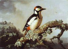"""""""Great Spotted Woodpecker"""" (1860)   - """"Käpytikka""""  Ferdinand von Wright (1822-1906)"""
