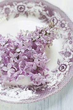 絵を描くように花を飾ろう。花器の代わりにお皿を使ったアレンジメント