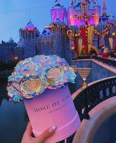 Forever Rose, Rose Arrangements, Luxury Flowers, Instagram Story Ideas, Pink Love, Women Life, Girly Things, Beautiful Flowers, Dream Wedding
