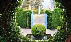 Best Gardens : Gardening : The Home Channel Japenese Maple, Home Channel, Amazing Gardens, Sidewalk, Gardening, Landscape, Plants, Side Walkway, Garten