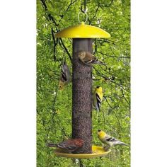 Perky-Pet Yellow Straight Sided Finch Tube Bird Feeder-YSSF00346 - The Home Depot