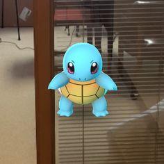 Squirtle ur going down!  #pokemon #pokemongo #GAAM