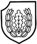 """16 SS Panzergrenadier Division """"Reichsführer-SS"""""""