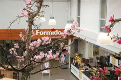 Bij Formido deco bouwmarkt Bodegraven kunt u ook terecht voor een keuken of badkamer. Kom inspiratie opdoen in onze showroom.