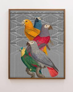 """""""Les Perroquet"""" Parrot Collage Print Antique Birds by Capricorn Press"""