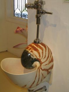 Miriam: I'll See Your Ammonite Sink And Raise You A Nautilus Urinal Urinal Art, Cool Toilets, Nautilus Shell, Ammonite, Home Deco, Event Design, Plumbing, Sea Shells, Man Bathroom
