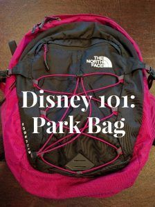 Disney 101: Park Bag
