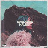 nice ALTERNATIVE ROCK - Album - $11.4 -  Badlands (Deluxe) [Explicit]