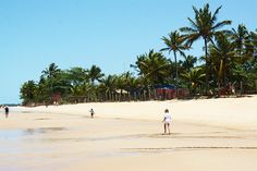 Insider's Guide to Trancoso, Brazil.. Trancoso, Bahia.