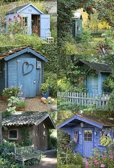 shed ideas - also blue spruce blue