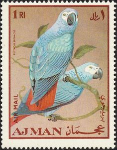Grey Parrot stamps - mainly images - gallery format