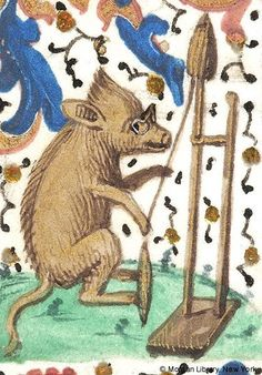 """Damien Kempf on Twitter: """"Sow with spectacles spinning (@MorganLibrary, MS M485) http://t.co/eJQLDQ7fg8"""""""